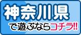 神奈川風俗特報