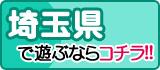 埼玉風俗特報
